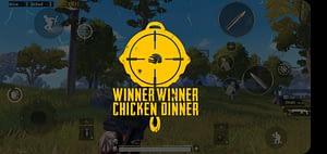 Tips Chicken Dinner