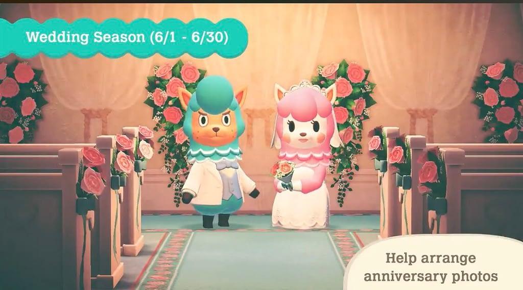 Pesan Romantis saat maen Game Animal Crossing